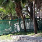 Reise: 4* PrideInn Flamingo Beach Resort & Spa in Shanzu Beach